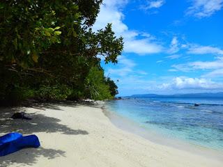 「こんなところに日本人」でソロモン諸島にいる青年海外協力隊員が取材されました!