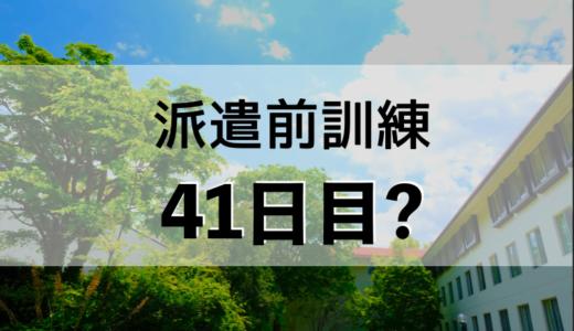 41日目?(5月16日)