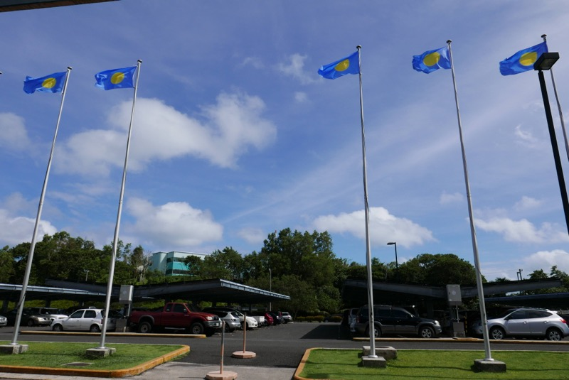 空港からでると見える旗。日中見ることは旅行では珍しいはず